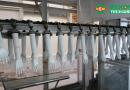 Hoá chất sản xuất găng tay y tế